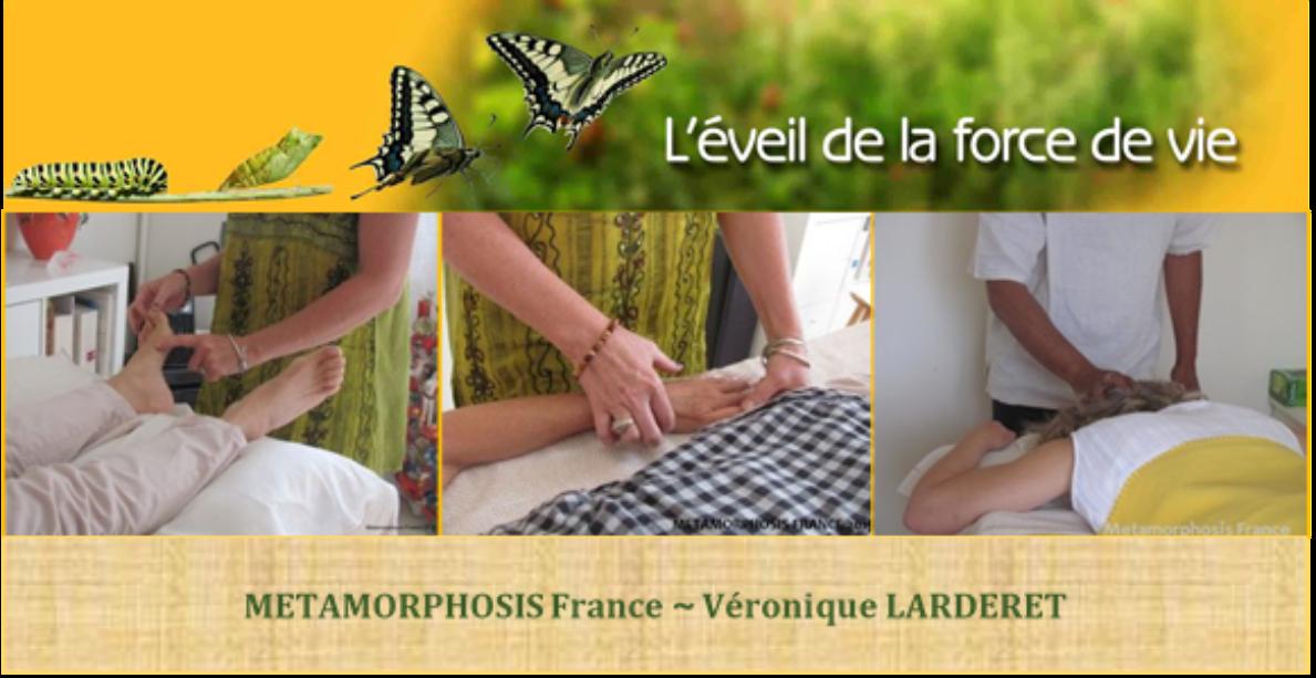Formation massage METAMORPHIQUE